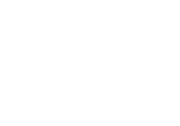 Miami Dice - logo