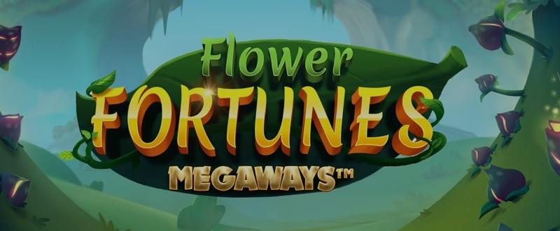 Uusi Mega Ways-slotti innovatiiviselta pelintarjoajalta